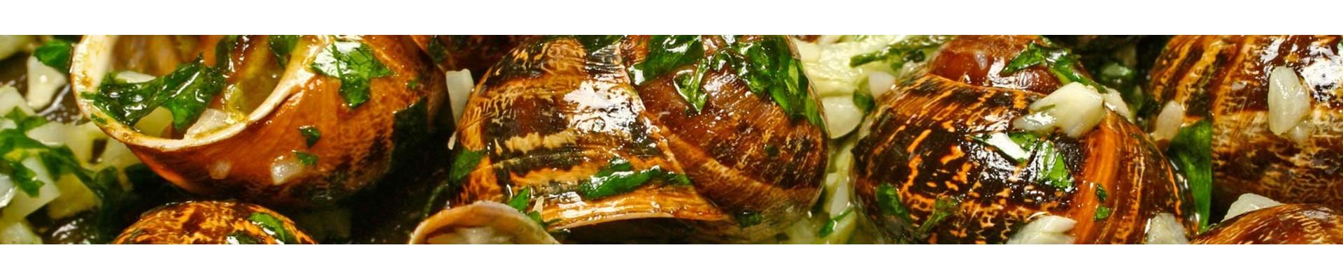 Escargots - Les produits de Provence - Escargots, Truffes, Miel - Enclave des Papes