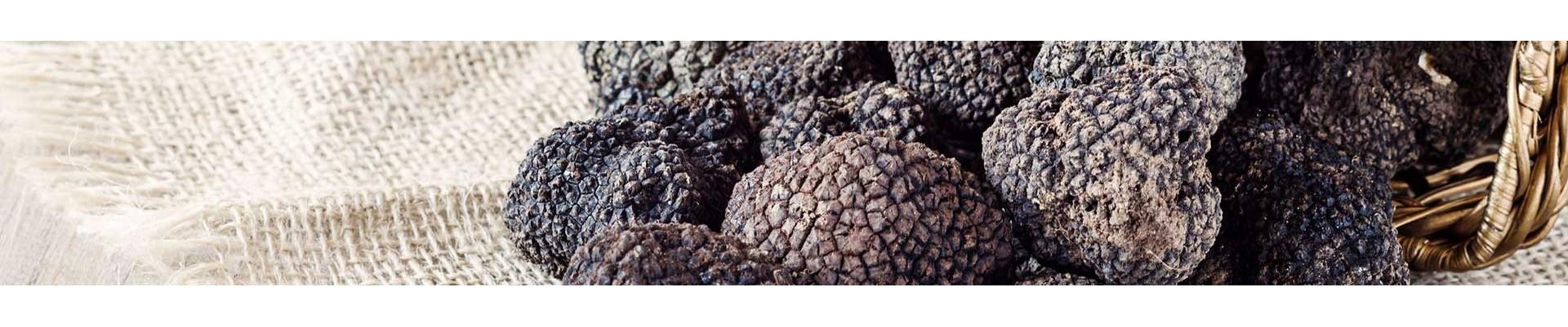 Truffes - Les produits de Provence - Escargots, Truffes, Miel - Enclave des Papes